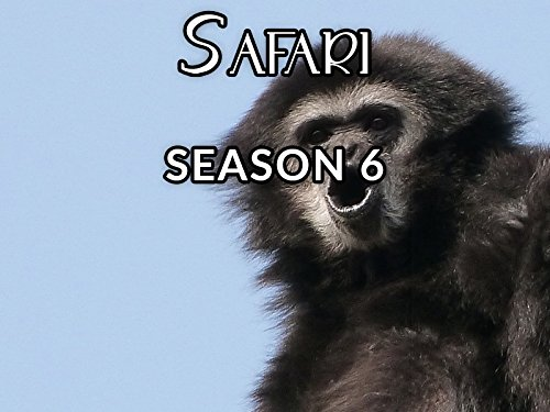 Safari - Season 6