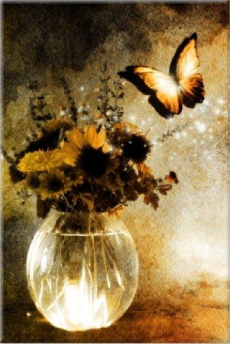 Startonight, luce nel buio Quadro su tela, farfalla in fuga 60 cm x 40 cm