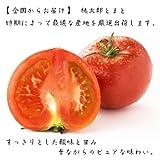美味しい野菜 全国からお届け 桃太郎トマト 1kg箱