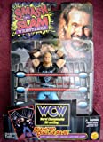 Diamond Dallas Page Wrestling Figure Smash 'N Slam WWF WWE WCW NWO
