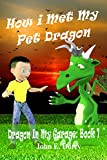 How I Met My Pet Dragon (Dragon in My Garage Book 1)
