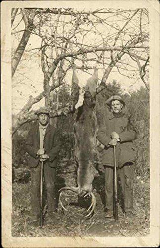 Whitetail-deer-harvest-Hunting-Original-Vintage-Postcard