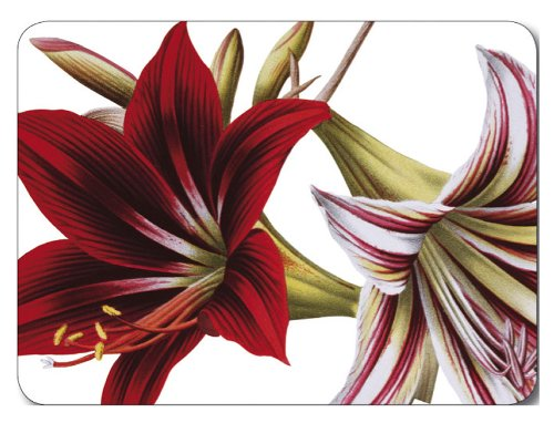 Jason Amaryllis Placemats Set Large