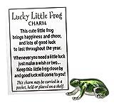 Lucky Little Frog Charm É