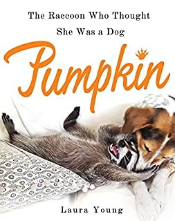 Book Cover: Pumpkin: The Raccoon Who Thought She Was a Dog