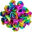 100 Real Fresh Rainbow Rose | Exotic and amazing