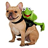 Small/ Medium Dog Rider Costume With Kermit The Frog Laying Down