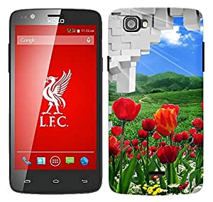 WOW Printed Designer Mobile Case Back Cover For Xolo One