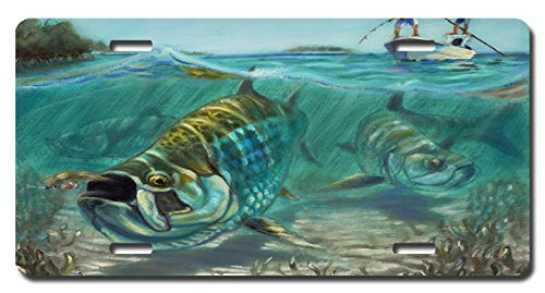 Saltwater fish artists images for Saltwater fishing license fl