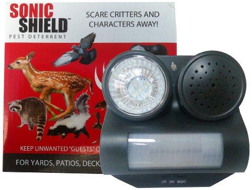 Top 10 Best Audible Sound Bird Deterrent Scarer Reviews 2019