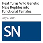 Heat Turns Wild Genetic Male Reptiles into Functional Females | Susan Milius