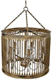 Laxmi Interiors Chamboid 5 Light Crystal Pendant Chandelier (25 W, Multicolored, LXC1701)