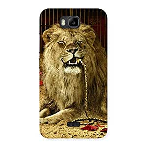 Premium Dude Lion Multicolor Back Case Cover for Honor Bee