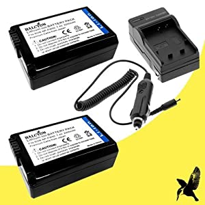 TWO NPFW50 Lithium Ion Replacement Batteries with Charger for Sony NEX-5N NEX-7 NEX-C3 Alpha Digital SLR Cameras DavisMAX Accessory Bundle