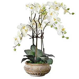 Pureday orchidea sintetica con vaso in ceramica marrone for Vaso orchidea