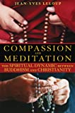 img - for Compassion and Meditation: The Spiritual Dynamic between Buddhism and Christianity book / textbook / text book