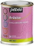 Pebeo 93504 Tafelfarbe 250 ml Metalldose
