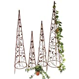 Supports plantes grimpantes for Support pour plantes grimpantes