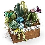 Sizzix Lkanase Thinlits Die 2D 3D Succulents LK Succulnt
