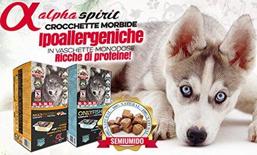 Crocchette Cane Pesce Alpha Spirit Only Fish Super Premium 85% pesce 5,67 kg Cibo Alimento Secco Cane