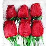 BLOWOUT Red Feather Roses (12 Pieces)