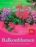 Balkonblumen: Die schönsten Arten für Töpfe und Kästen