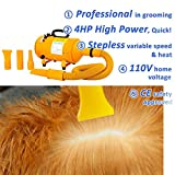 Free Paws 4HP High-Power Stepless Adjustable Speed & Heat Pet Grooming Hair Dryer With 3 Different Nozzles