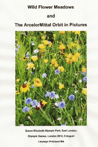 wild-flower-meadows-and-the-arcelormittal-orbit-in-pictures-olympic-legacy-volume-18