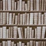 Sepia F92307 3D Effect Bookcase Bookshelf Library Sculptured Vinyl Wallpaper