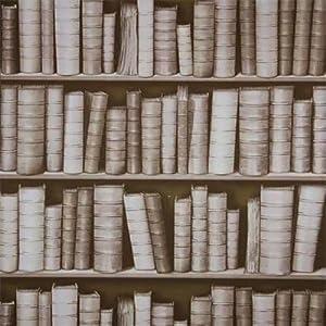 Carta da parati vinilica seppia f92307 effetto 3d libreria for Parati 3d prezzi