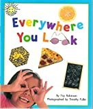 img - for Everywhere You Look (Sunshine Nonfiction, Level H) book / textbook / text book