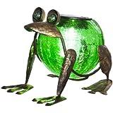 Quirky Solar Frog Lantern