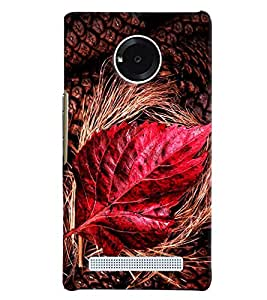 Blue Throat Red Leaf Inspired Hard Plastic Printed Back Cover/Case For Micromax Yu Yuphoria
