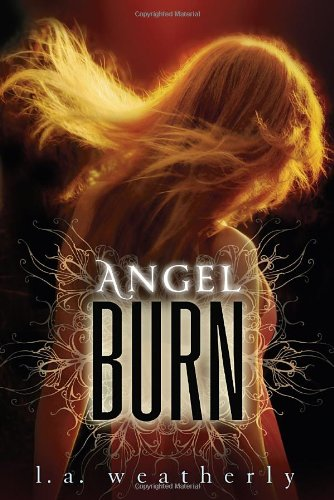 Cover of Angel Burn