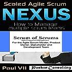 Agile Project Management Box Set: Scaled Agile Scrum: Nexus & Scrum of Scrums Hörbuch von  Paul Vii Gesprochen von: Randal Schaffer, Scott Clem
