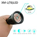 Ultra Bright CREE XML T6 LED 600 Lumen Tactical Flashlight Water Resistant Camping Torch Adjustable Focus 5 Light Modes for Indoor and Outdoor Sports