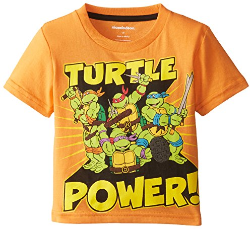 Teenage Mutant Ninja Turtles Little Boys' Turtle Power Group Shot T-Shirt