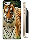 Lovely Power Tigers Cases Covers Phone Hard Back Cases Beautiful Nice Cute Animal hot selling cell phone cases for Apple Accessories iPhone 5/5S # 3