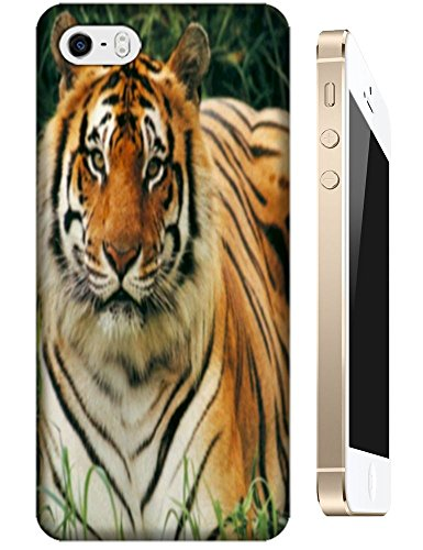 Tiger Case Cover Hard Back Cases Beautiful Nice Cute Animal Hot Selling Cell Phone Cases For Apple Accessories Iphone 5C # 3