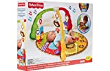 Fisher-Price Luv U Zoo Musical Mirror Gym.