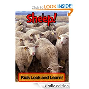 Sheep! Learn About Sheep and Enjoy Colorful Pictures - Look and Learn! (50+ Photos of Sheep)