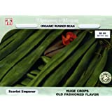 Thompson & Morgan 4742 Organic Bean Runner Scarlet Emperor Double Seed Packet