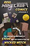 img - for The Amazing Adventures of Steve and the Search for the Wicked Witch (Real Minecraft Comics Book 2) book / textbook / text book