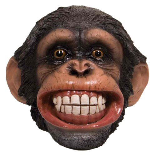Money Bank - Smiling Chimp