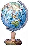 プラスチック 地球儀(行政図) GL263