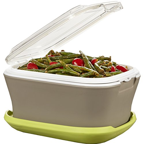 fit-fresh-gatherings-go-side-insulated-food-saver-server