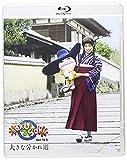 saku saku Ver.10.0/�礭��ʬ����ƻ [Blu-ray]
