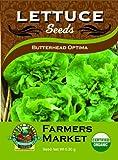 Organic Butterhead Optima Lettuce Seeds