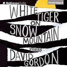 White Tiger on Snow Mountain: Stories (       UNABRIDGED) by David Gordon Narrated by David de Vries