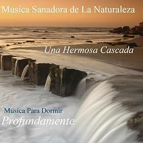 Una hermosa cascada sonidos sanadores de la for Naturaleza hermosa